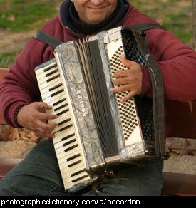 Photo of a man playing an accordian.