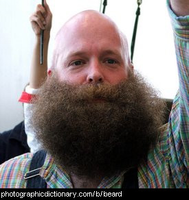 Photo of a man with a large beard