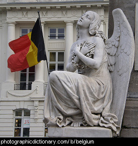 Photo of the Belgian flag