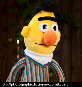 Photo of a Bert puppet