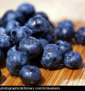 Photo of blueberries