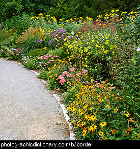 Photo of a garden border