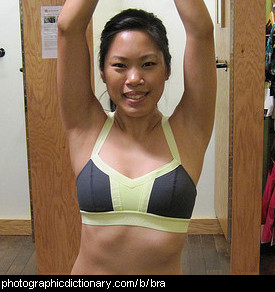 Photo of a woman wearing a bra.