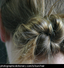 Photo of a woman with a bun in her hair