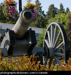 Photo of a cannon