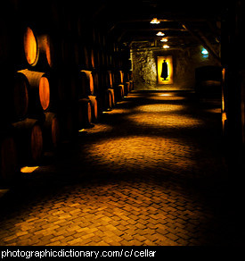 Photo of a cellar