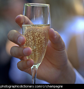 Photo of a glass of Champagne