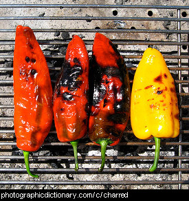 Photo of charred peppers