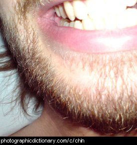 Photo of a man's chin