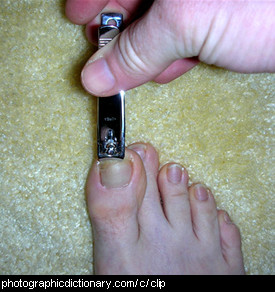 Photo of someone clipping their toenails