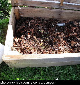 Photo of compost.