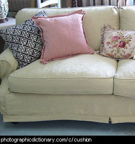 Photo of cushions on a lounge.
