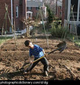Photo of a boy digging
