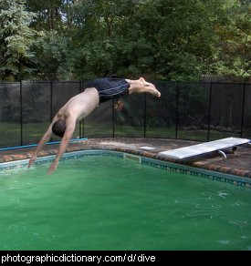 Photo of someone diving into a swimming pool