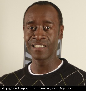 Actor Don Cheadle.