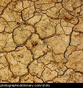 Photo of some dry ground