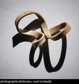Photo of an elastic band