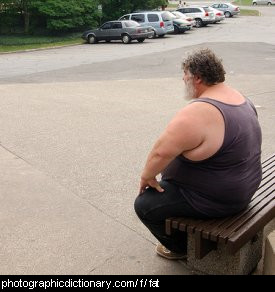 Photo of a fat man sitting on a bench