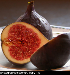 Photo of some figs