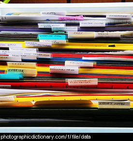 Photo of files