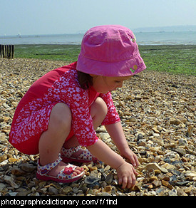 Photo of a little girl looking for shells
