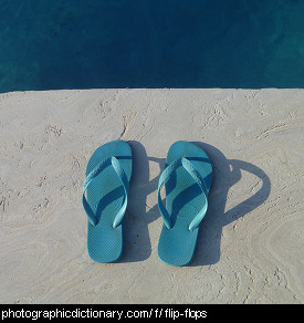 Photo of flipflops