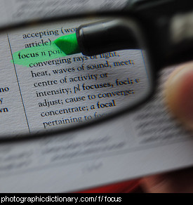 Photo of some words in focus