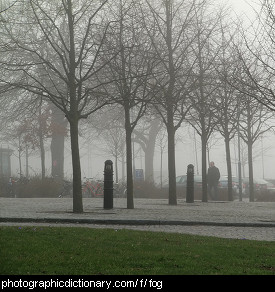 Photo of fog