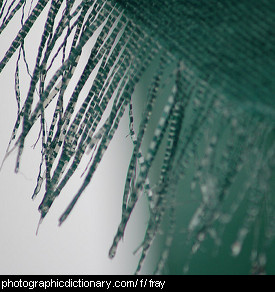 Photo of fraying fabric