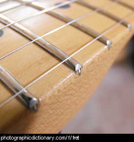 Photo of guitar frets