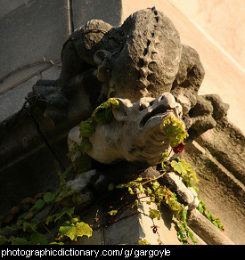 Photo of a gargoyle.