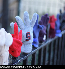 Photo of gloves on a fence.