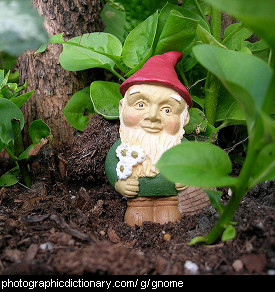 Photo of a garden gnome.