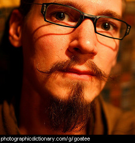 Photo of a man with a goatee