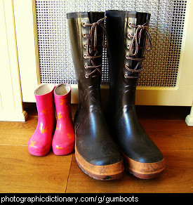 Photo of some gumboots.