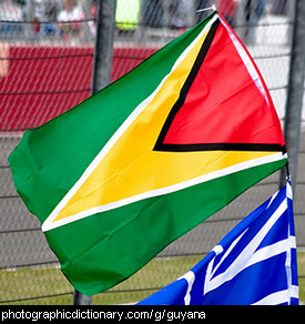 Photo of the Guyana flag