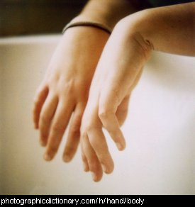Photo of a pair of hands.