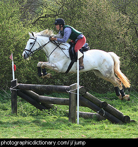Photo of a horse jumping over a barrier