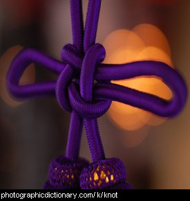 Photo of a purple knot