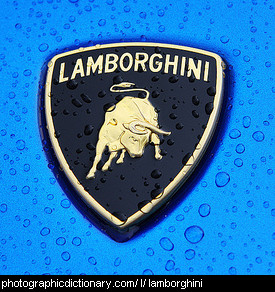 Photo of a Lamborghini badge
