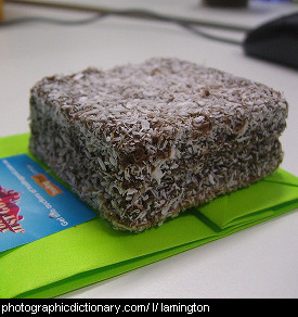 Photo of a lamington