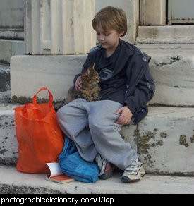 Photo of a boy with a cat on his lap