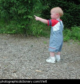 Photo of a child pointing left