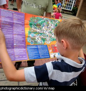 Photo of a boy reading a map
