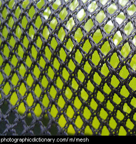 Photo of some mesh