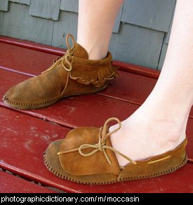 Photo of someone wearing moccasins