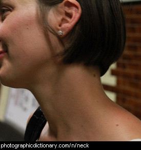 Photo of a lady's neck.
