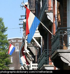 Photo of Netherlands flags