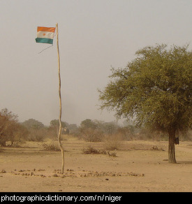 Photo of the Niger flag