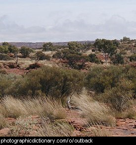 Photo of the Australian outback